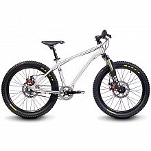 "Велосипед детский 20"" Early Rider Belter Trail 3S Brushed / 2017"